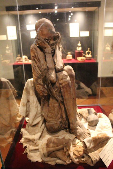 momia peruana Museo de Arqueología Antropología e Historia de la UNT