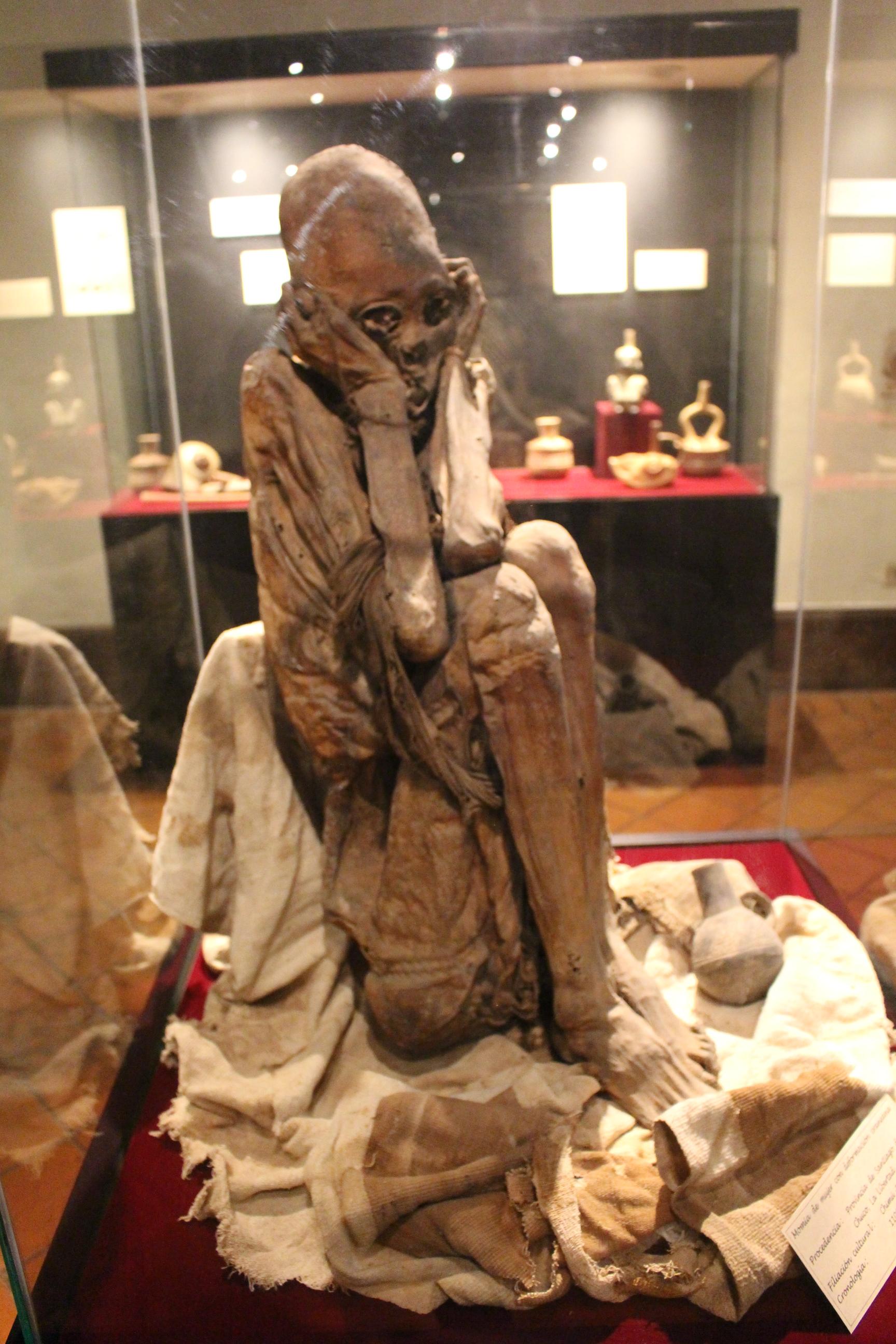 momia peruana